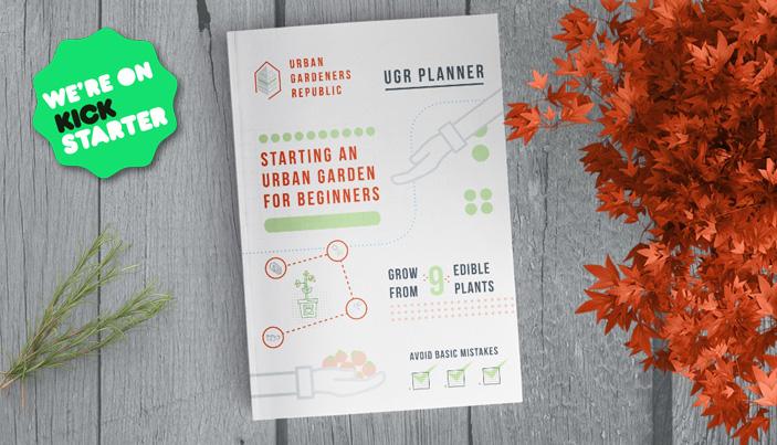 créez votre jardin en ville